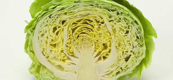 ダイエットに最適なキャベツの栄養と嬉しい7つの効果