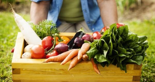 体に悪い食べ物を見抜いて家族の健康を守るポイントとは