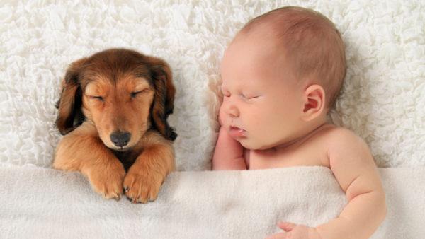 不眠症の原因をつきとめて爽快な眠りを回復する方法