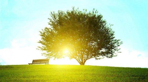 ストレスでかかりやすい病気を日頃から予防するコツ